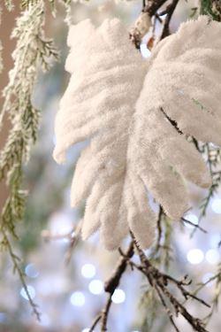 Immagine di Foglia Philo snow,  h.cm64