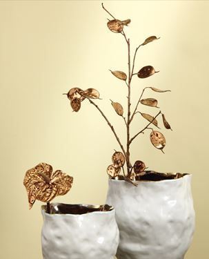 Immagine di Anthurium metallic rame, h.cm60