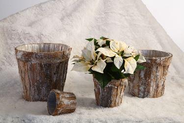 Immagine di S/4 Vasi corteccia neve, da cm9x9.5xh.6.5 a cm21x21xh.16