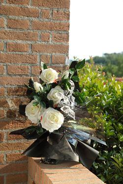 Immagine di Rosa x3 bianca, h. cm 100