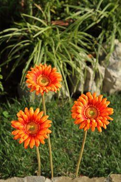 Immagine di Gerbera singola arancio, h. cm 53