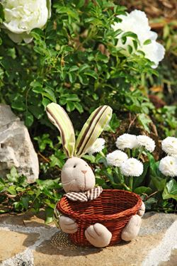 Picture of Cestini bunny ass. in tessuto diam.15xh.22cm (h. cesto 6.5cm)