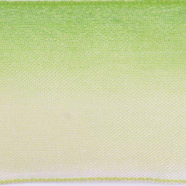Immagine di Nastro FRAGRANCE h.mm40, 20m verde chiaro