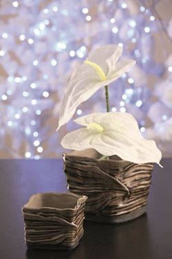 Immagine di Anthurium con glitter, h.cm72 bianco
