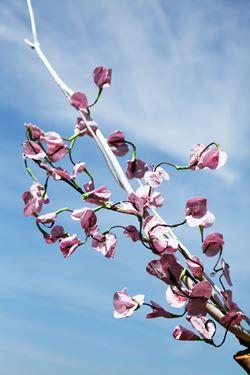 Immagine di Ramo fiori  cm80