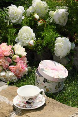 Immagine di Box regalo tazza cappuccino gattini sc:D16xH9;tz:D10.5xH5cm