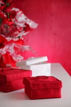 Immagine di S/2 Scatole quadrate,rosso, tessuto inamidato,12xH7,15xH8cm