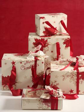 Picture of Box 24,5x24,5x15h, STELLA DI NATALE, amaranto, steso
