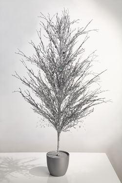 Immagine di Abero glitter argento,  h.cm130
