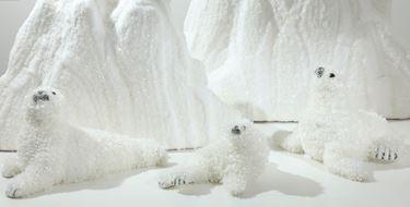 Immagine di Foca bianca cm34
