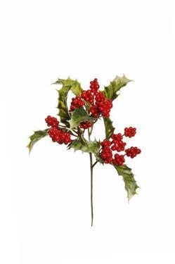 Picture of Agrifoglio bacche pick, rosso h.cm17