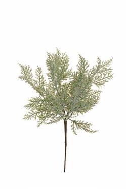 Immagine di Bush x6 tuia pino verde/grigio innevato, h.33cm