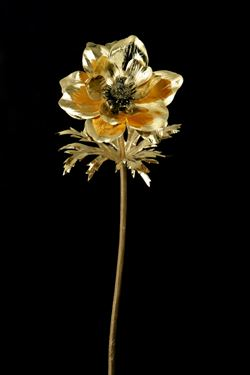 Immagine di Anemone metallic oro,  h.cm70
