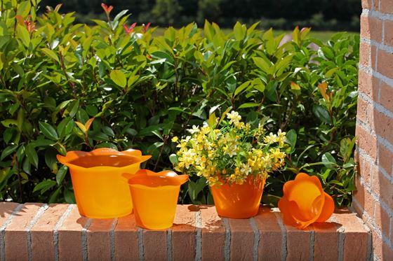 Picture of Coprivaso DOLLY in plastica arancio per vaso di diam. 14 cm