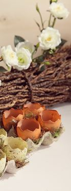 Immagine di Contenitore con 4 gusci di uova rotte marrone in plastica, cm10x10xh.6