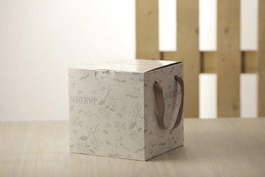 Immagine di Box 24,5x24,5x15h, HYDRANGEA bianco/argento, steso