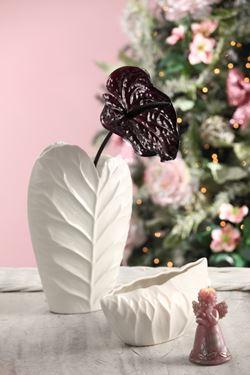 Picture of Anturium porcelain, h.cm75 viola