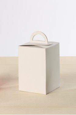 Immagine di Box FULL bianco 10x10x15h steso