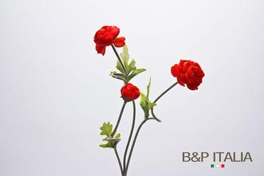 Immagine di Camelia x3 rossa, h. cm 58
