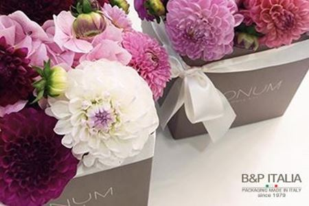 Picture for category FLOWER BOX