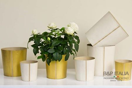 Picture for category CONICAL POTS